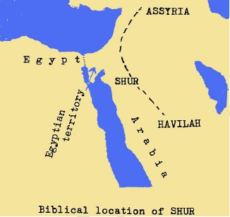 RED SEA CROSSING True Discoveries
