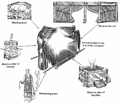 THE ARK OF THE COVENANT - True Discoveries